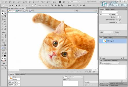 Adobe Fireworks CS6 Screenshot2