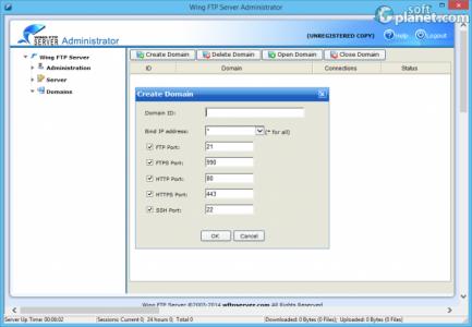 Wing FTP Server Screenshot3